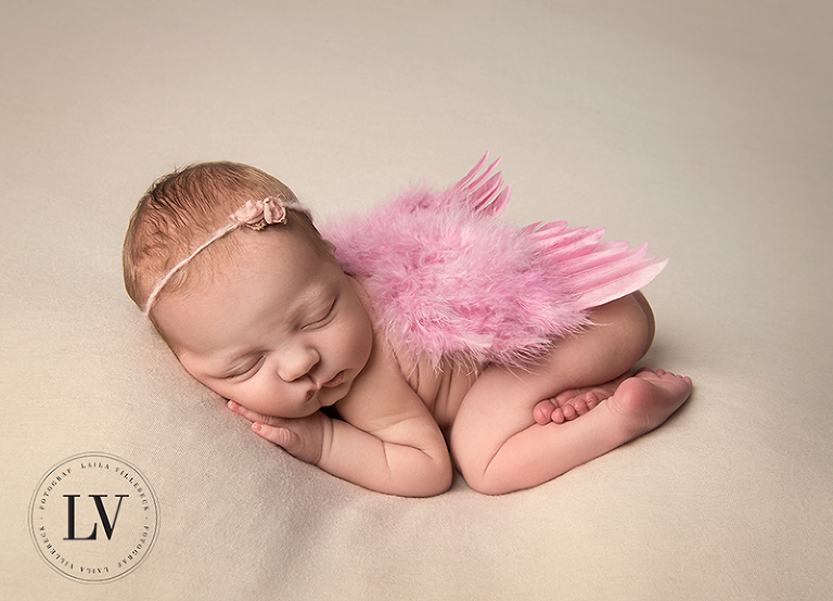 Baby angel with pink wings